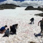 Campamento de verano - Whistler 14